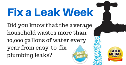 Fixing the Leak - Earth Day 2017 Activities